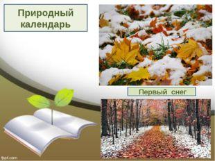 Природный календарь Первый снег