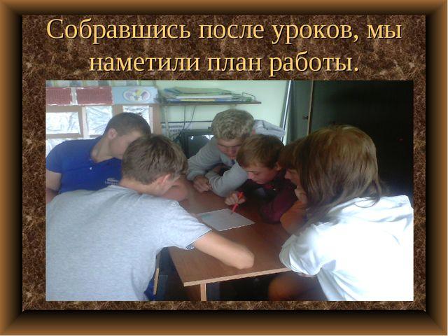 Собравшись после уроков, мы наметили план работы.