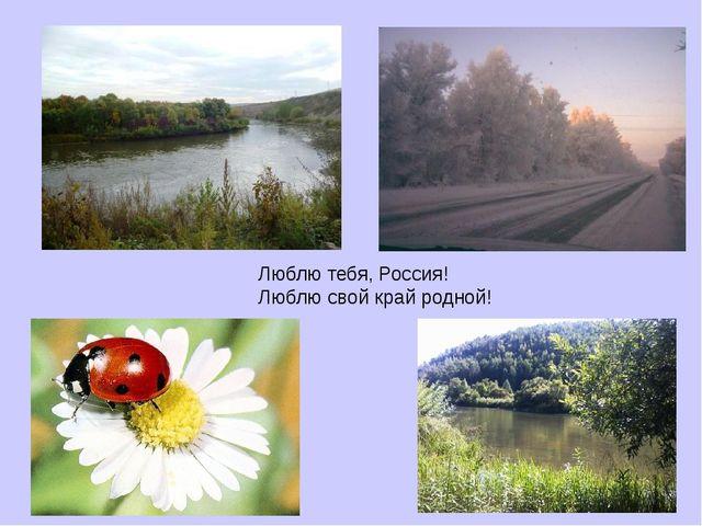 Люблю тебя, Россия! Люблю свой край родной!