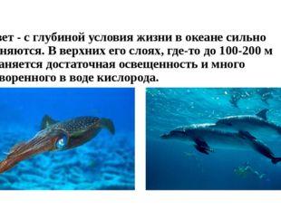 4. Свет - с глубиной условия жизни в океане сильно изменяются. В верхних его