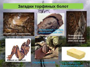 Загадки торфяных болот Толлундский человек, возрастом 2000 лет Псалтырь в пер