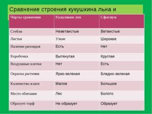 Сравнение строения кукушкина льна и сфагнума Черты сравнения Кукушкин лен С