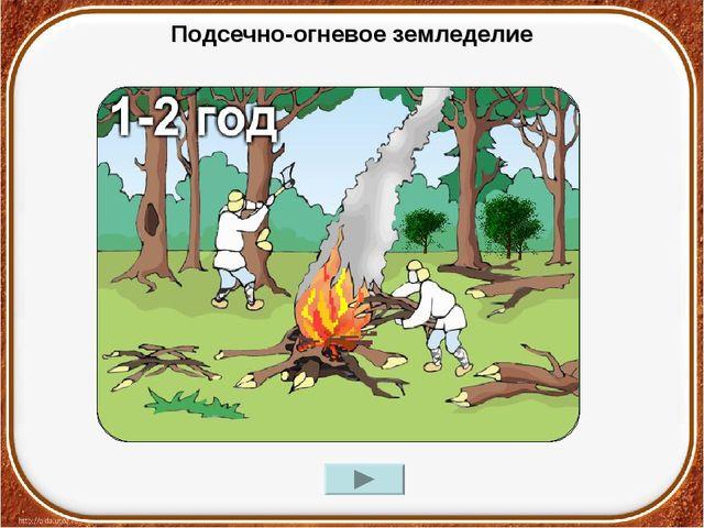 Подсечно-огневое земледелие
