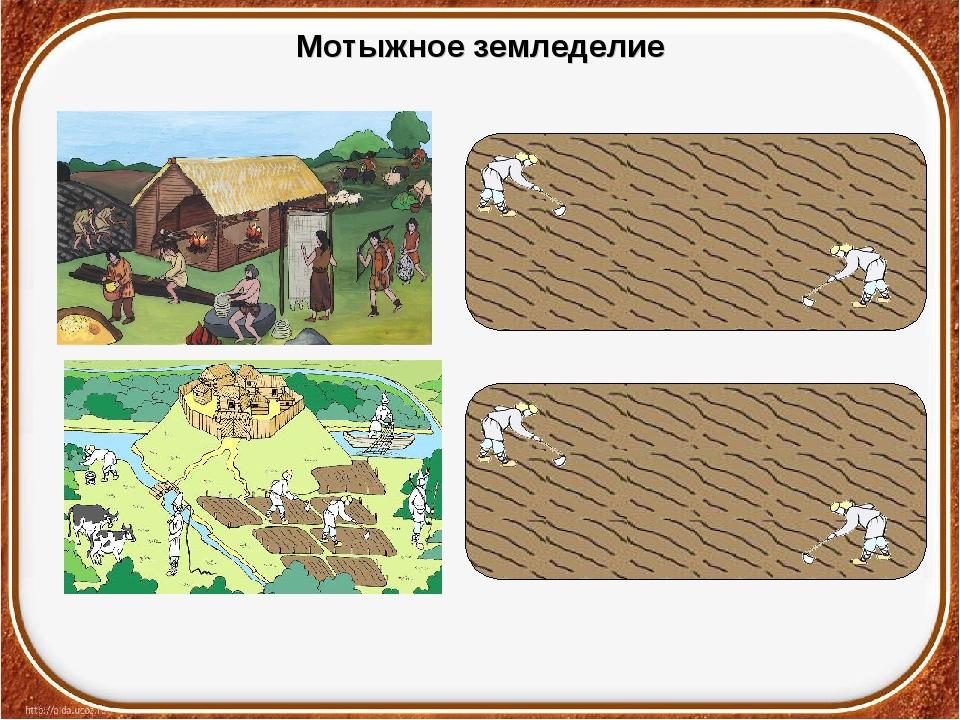 Мотыжное земледелие
