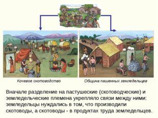 Вначале разделение на пастушеские (скотоводческие) и земледельческие племена