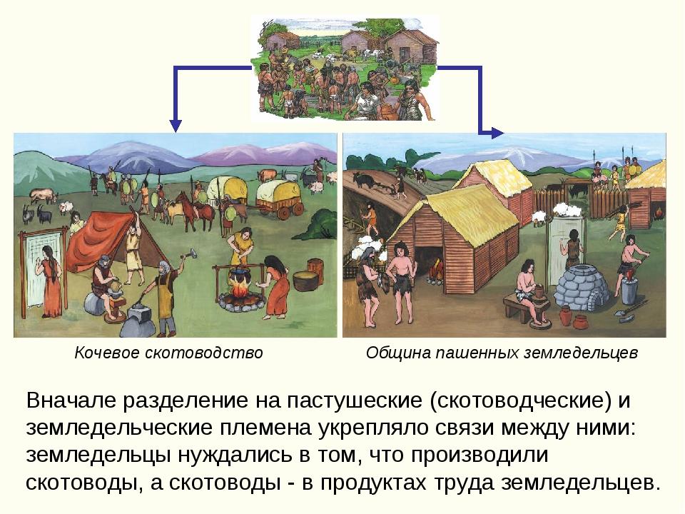 Вначале разделение на пастушеские (скотоводческие) и земледельческие племена...