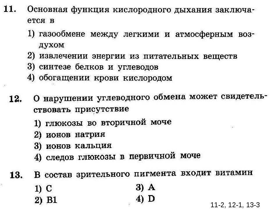 11-2, 12-1, 13-3