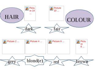 Brown fair fair dark brown grey blond(e) red Hair Hair HAIR COLOUR
