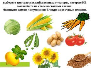 выберите три сельскохозяйственных культуры, которые НЕ могли быть на столе во