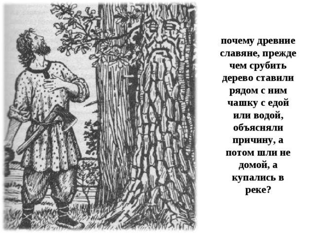 почему древние славяне, прежде чем срубить дерево ставили рядом с ним чашку с...