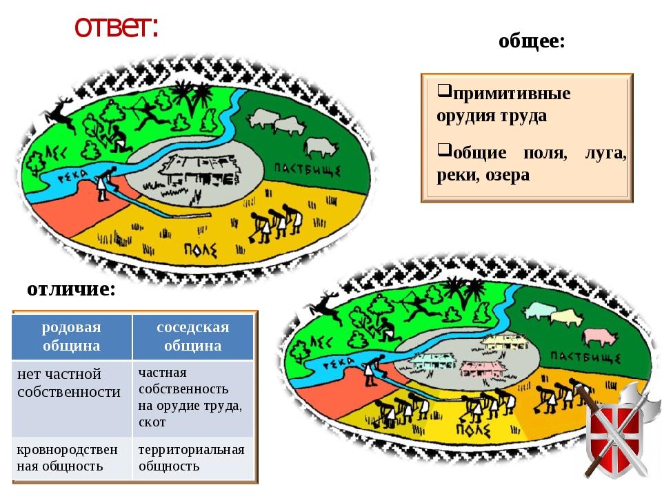 ответ: общее: примитивные орудия труда общие поля, луга, реки, озера отличие:...