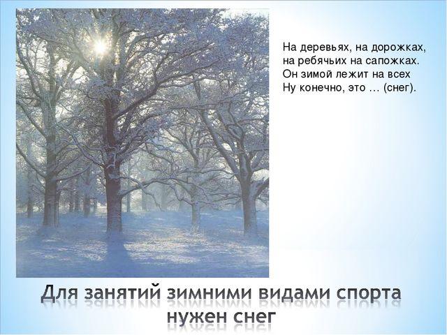 На деревьях, на дорожках, на ребячьих на сапожках. Он зимой лежит на всех Ну...