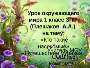 Урок окружающего мира 1 класс ЗПР (Плешаков А.А.) на тему: «Кто такие насеком