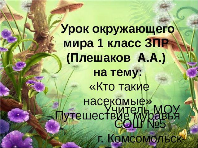 Урок окружающего мира 1 класс ЗПР (Плешаков А.А.) на тему: «Кто такие насеком...