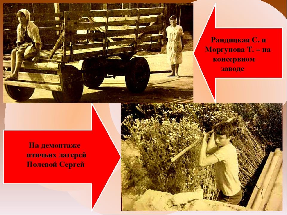 Рандицкая С. и Моргунова Т. – на консервном заводе На демонтаже птичьих лаге...