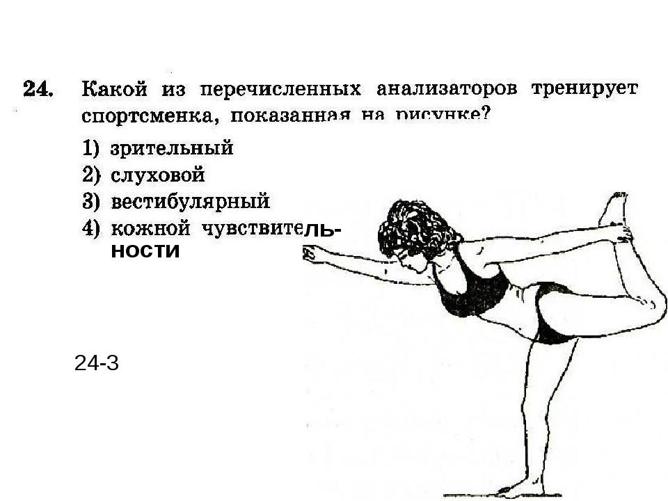 ль- ности 24-3