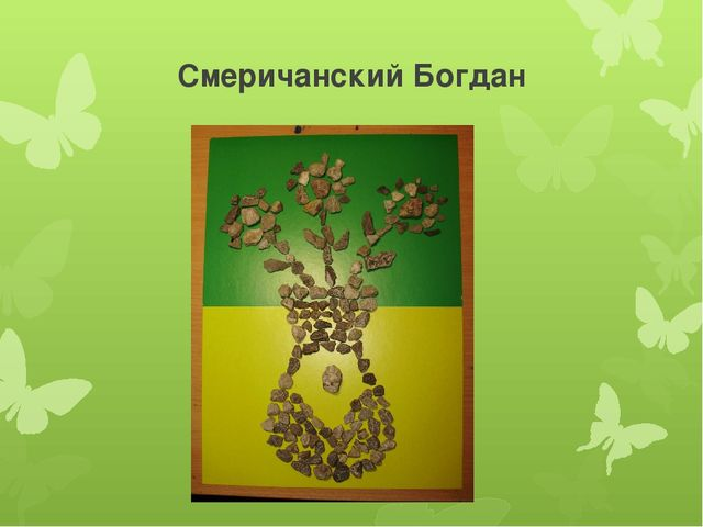 Смеричанский Богдан
