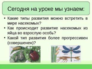 Сегодня на уроке мы узнаем: Какие типы развития можно встретить в мире насеко