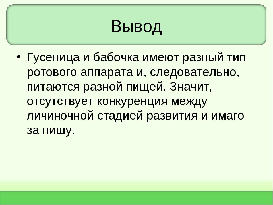 Вывод Гусеница и бабочка имеют разный тип ротового аппарата и, следовательно,...