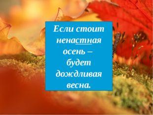 Если стоит ненастная осень – будет дождливая весна.