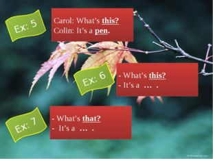 Carol: What's this? Colin: It's a pen. - What's this? - It's a … . - What's t