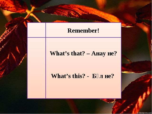 Remember! What's that? – Анау не? What's this? - Бұл не?
