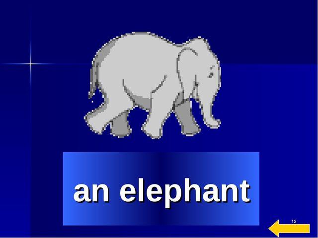 * an elephant