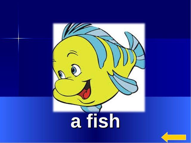 * a fish