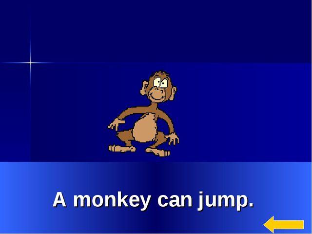* A monkey can jump.