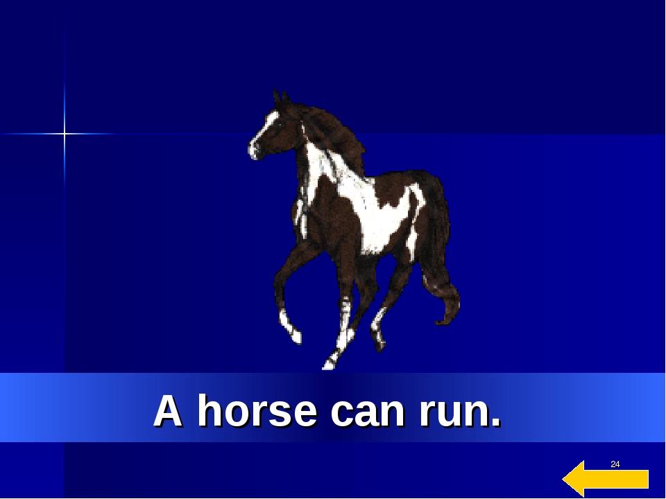 * A horse can run.