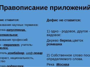 Правописание приложений Дефис ставится: 1) Названия научных терминов: бабочка