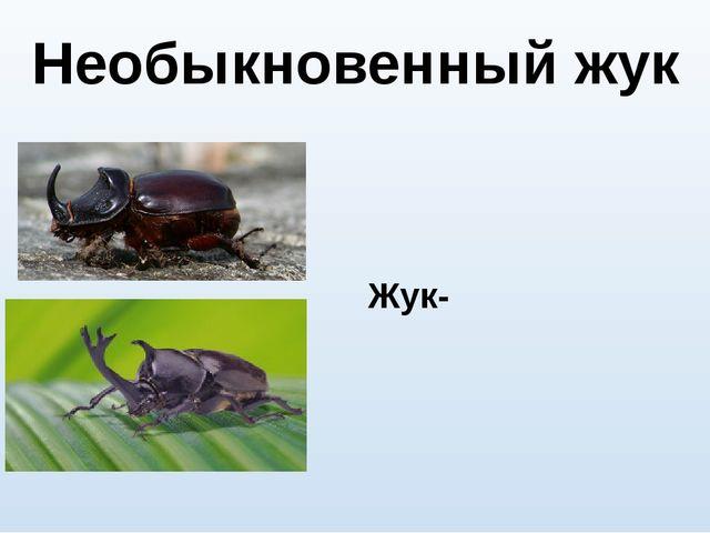 Необыкновенный жук Жук-