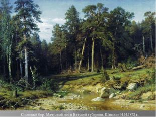 Сосновый бор. Мачтовый лес в Вятской губернии. Шишкин И.И.1872 г.
