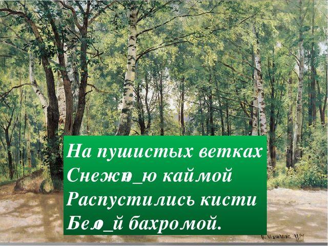 На пушистых ветках Снежн_ю каймой Распустились кисти Бел_й бахромой. о о