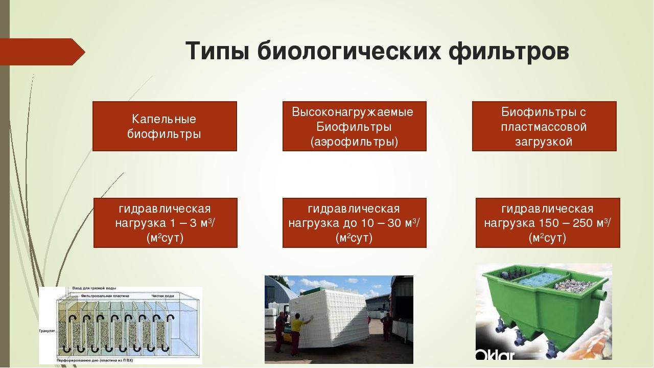 Типы биологических фильтров Капельные биофильтры Высоконагружаемые Биофильтры...
