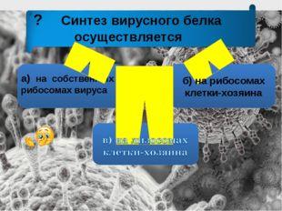 ? Синтез вирусного белка осуществляется а) на собственных рибосомах вируса б)