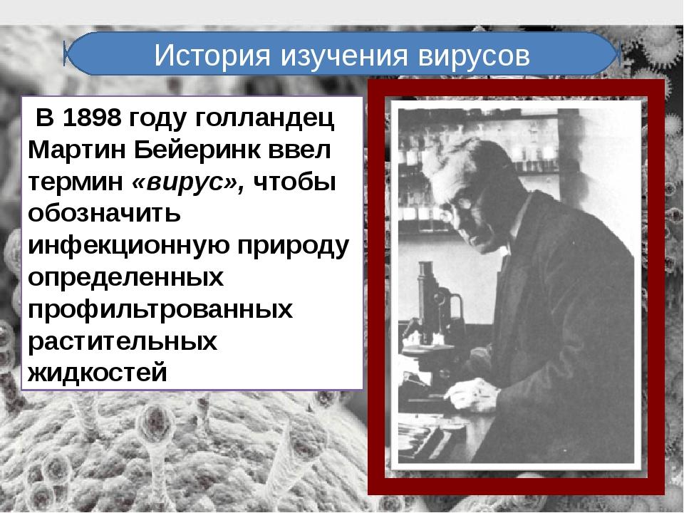 В 1898 году голландец Мартин Бейеринк ввел термин «вирус», чтобы обозначить...