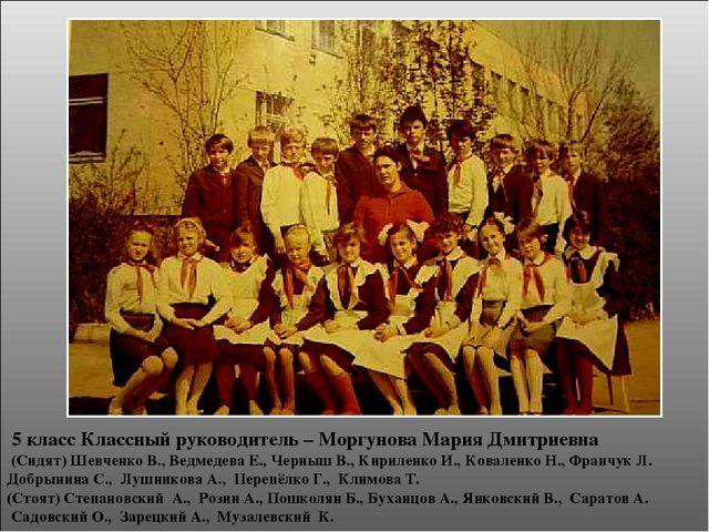 5 класс Классный руководитель – Моргунова Мария Дмитриевна (Сидят) Шевченко...