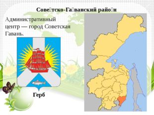 Сове́тско-Га́ванский райо́н Административный центр—город Советская Гавань.