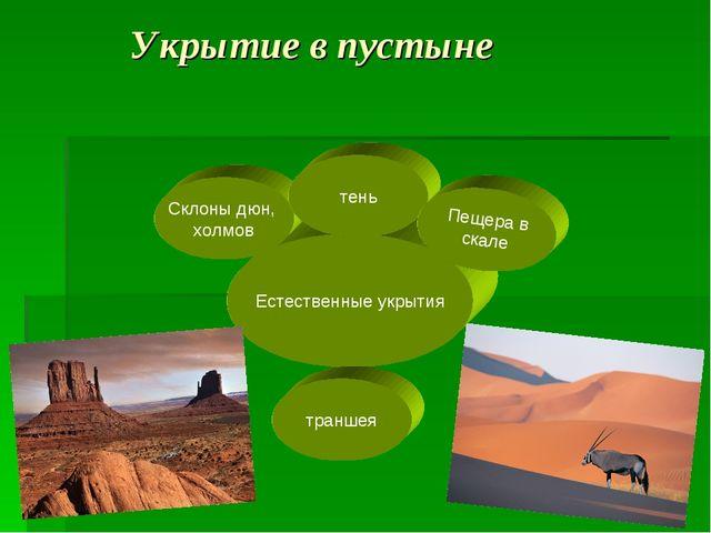 Естественные укрытия Склоны дюн, холмов Укрытие в пустыне тень Пещера в скале...