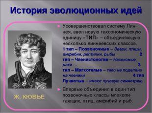 История эволюционных идей Ж. КЮВЬЕ Усовершенствовал систему Лин-нея, ввел нов