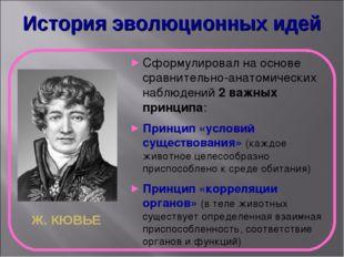 История эволюционных идей Ж. КЮВЬЕ Сформулировал на основе сравнительно-анато