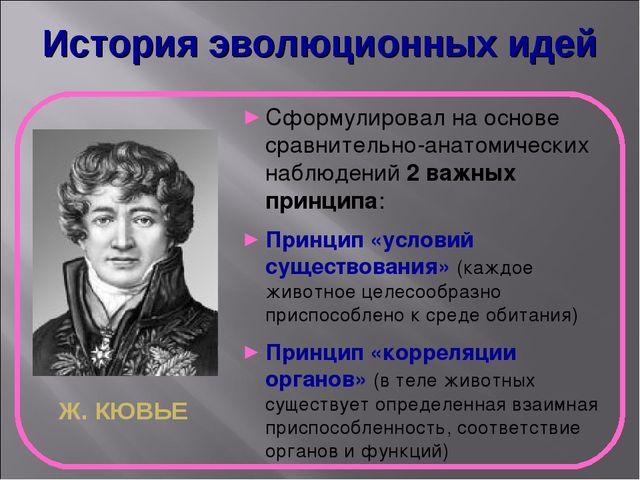 История эволюционных идей Ж. КЮВЬЕ Сформулировал на основе сравнительно-анато...