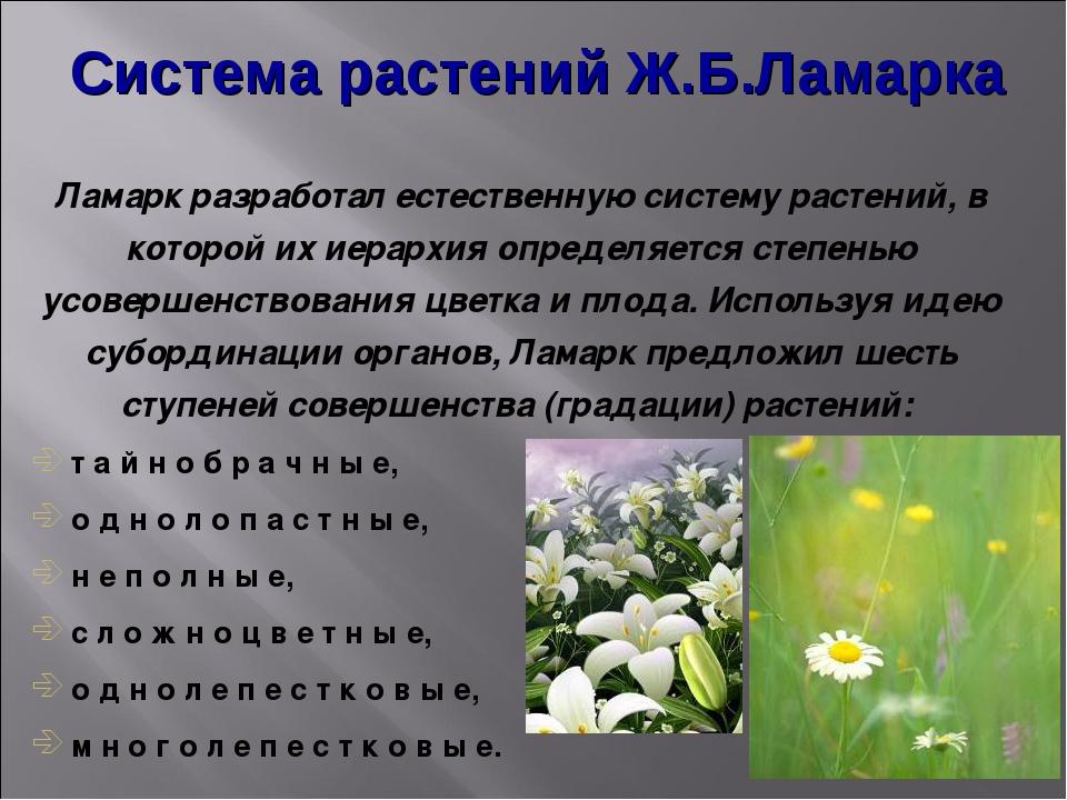 Система растений Ж.Б.Ламарка Ламарк разработал естественную систему растений,...