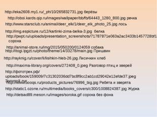 http://eka2608.my1.ru/_ph/10/265832731.jpg берёзы http://oboi.kards.qip.ru/im