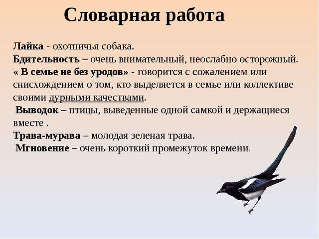 Словарная работа Лайка - охотничья собака. Бдительность – очень внимательный,...