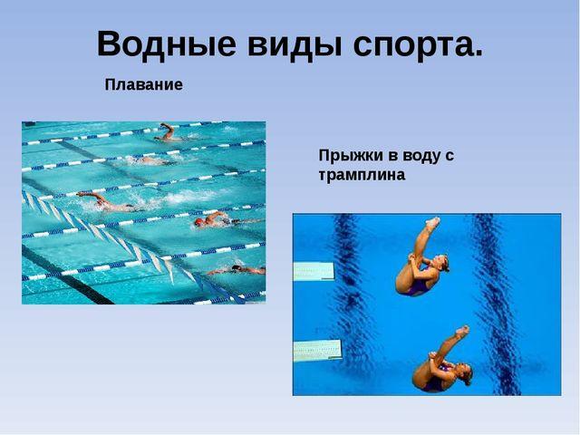 Водные виды спорта. Плавание Прыжки в воду с трамплина