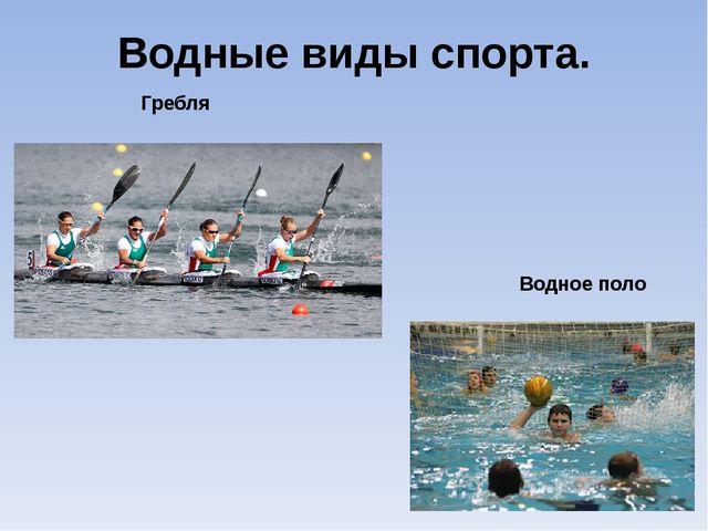 Водные виды спорта. Гребля Водное поло