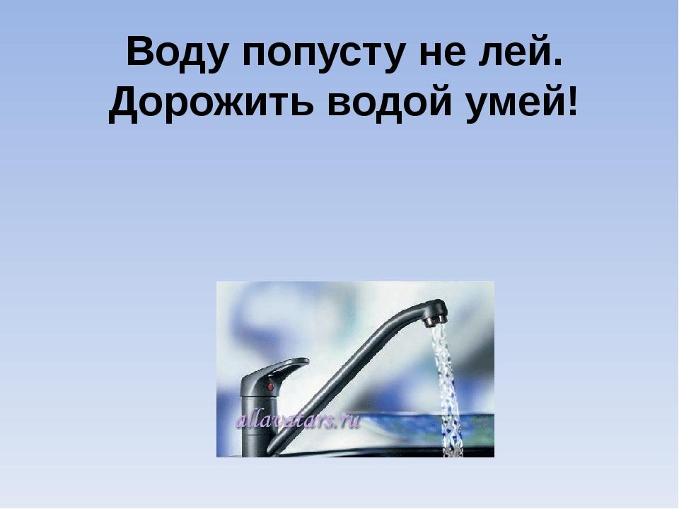 Воду попусту не лей. Дорожить водой умей!