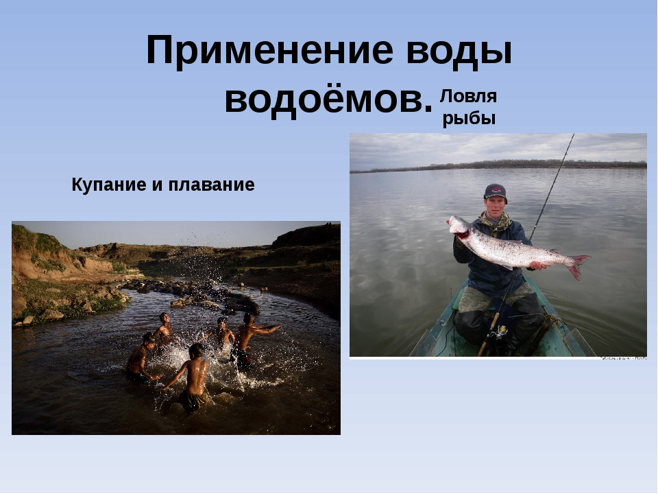 Применение воды водоёмов. Купание и плавание Ловля рыбы